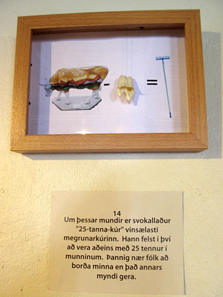 "Djúpavík. Exhibition: Ómar Smári Kristinsson and Nína Ivanova - ""25"". - ""These days the most popular diet is the so called ""25 tooth diet"". You should leave only 25 teeth in your mouth. After that you will eat less than with all your teeth intact."" (18 July 2010)"