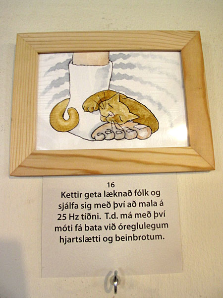 "Djúpavík. Exhibition: Ómar Smári Kristinsson and Nína Ivanova - ""25"". - ""It is known that cats can heal themselves and people by purring with the frequency of 25 Hz, for instance broken bones and an irregular heart beat."" (18 July 2010)"