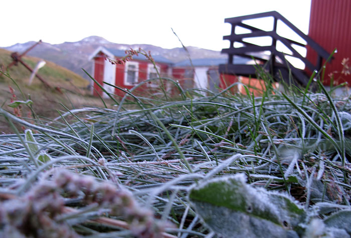 Djúpavík. Weekend here. - Frost during the first night. Here at the morning... (9 till 11 September 2011)