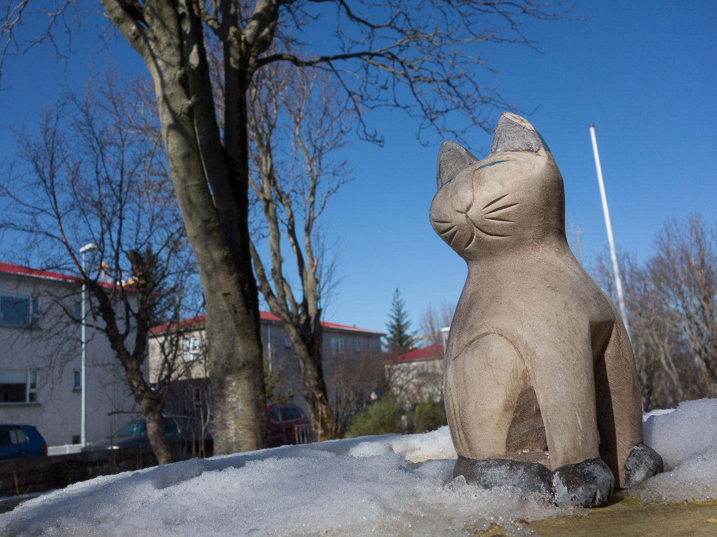 Reykjavík. Miscellaneous LXXXVI. - Cats like springtime - and to be outside again! (1 till 29 April 2015)