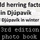 3rd edition of photo book - Subject 1 - The old herring factory in Djúpavík - and Djúpavík in winter!